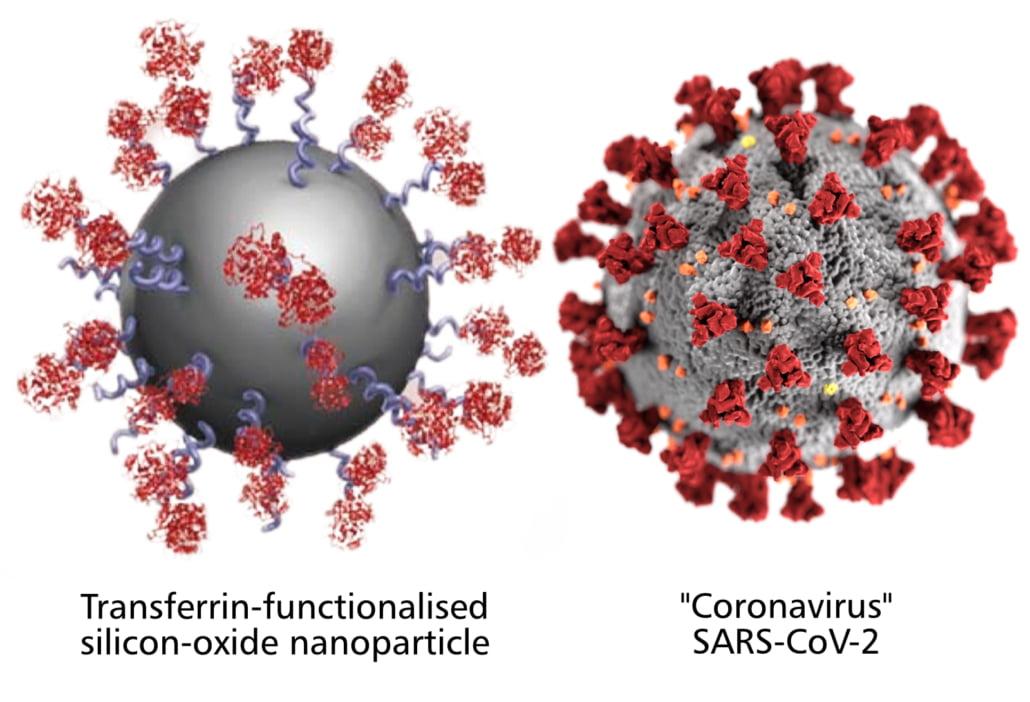 COVID-19 Vaccine Ingredients 10