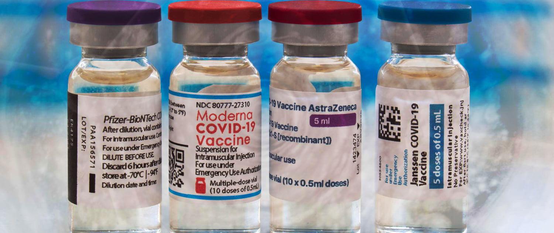 COVID-19 Vaccine Ingredients 1